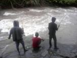 Mangai ikan di Lubuk Kanca