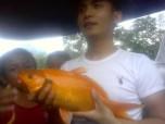 Ikan Juara 1 digendong oleh Bang Apri, mahasiswa KKN STAIN Batusangkar