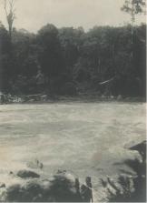 "Stroomversnelling in de Kampar, vermoedelijk bij Moearamahat bij Pangkalankotabaroe (terjemahan: ""Aliran sungai di Kampar, kemungkinan di Muara Mahat, Pangkalan Koto Baru)"