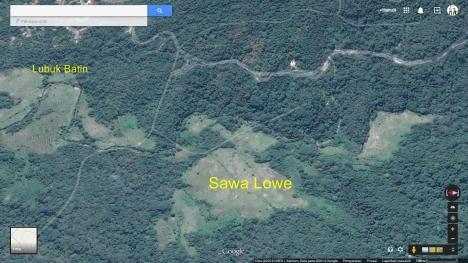 sawa lowe