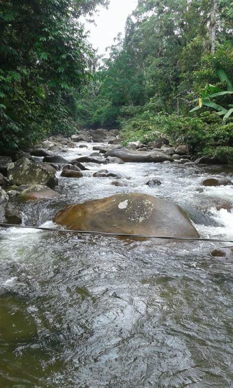 Ai Koto Lamo, Hulu Batang Samo/ Sisamo